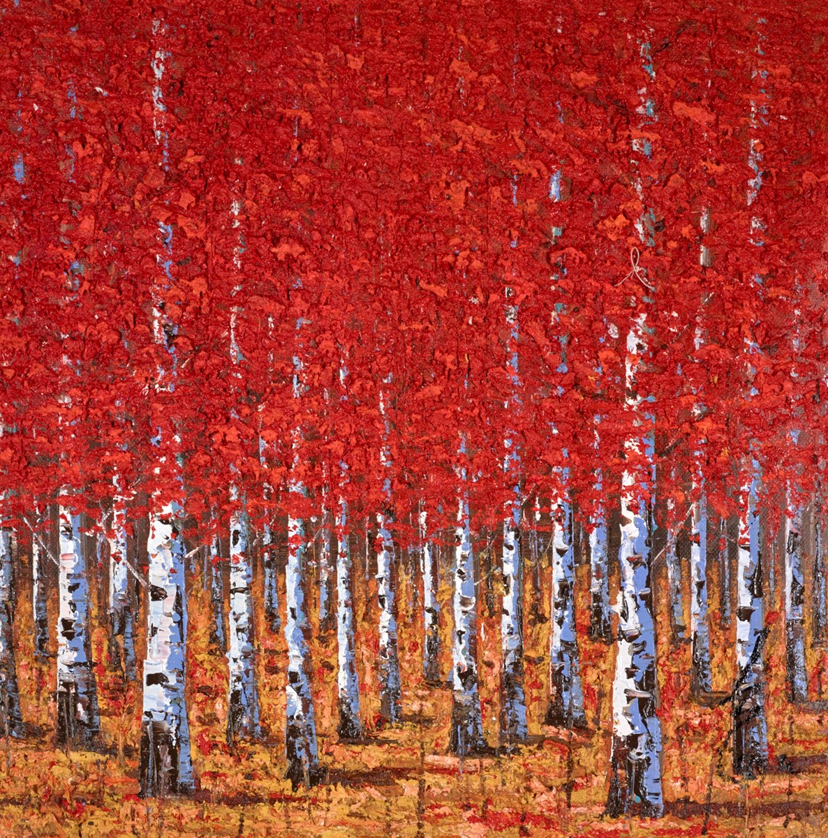 The Birch Forest III by inam -  sized 30x30 inches. Available from Whitewall Galleries